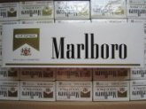 Marlboro Gold Regular Cigarettes (40 Cartons)