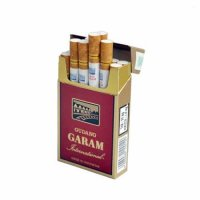 Gudang Garam International cigarettes 10 cartons